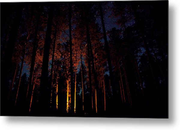 Thru The Dark Metal Print