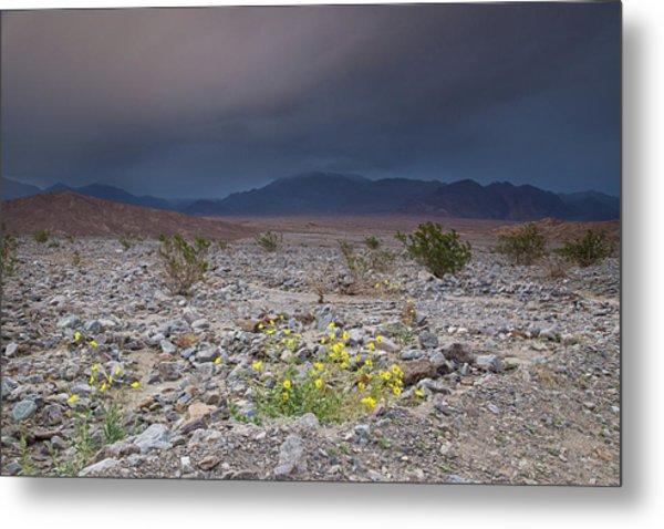 Thunderstorm Over Death Valley National Park Metal Print
