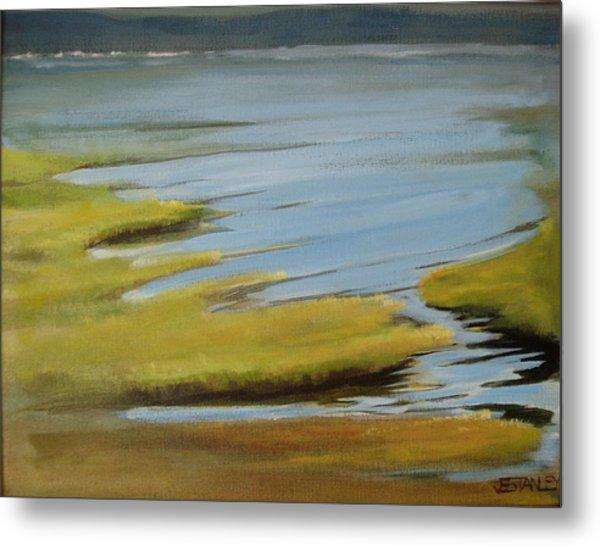 Tidal Pond Metal Print by Jenny Stanley
