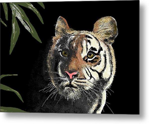 Tiger Metal Print by Carole Boyd