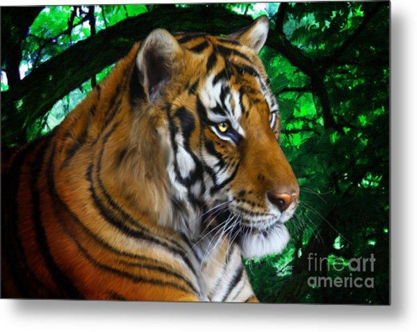 Tiger Contemplation Metal Print