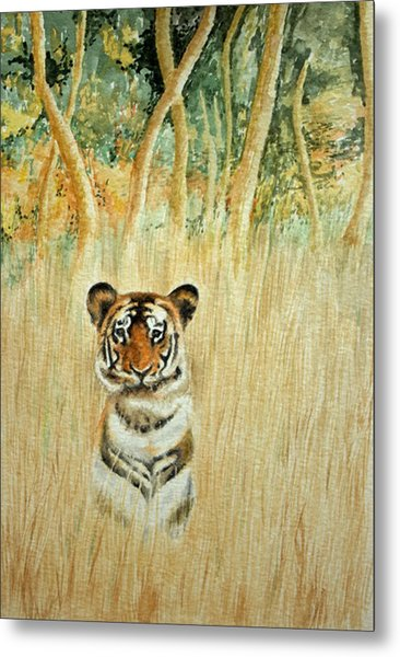 Tiger In The Long Grass Metal Print
