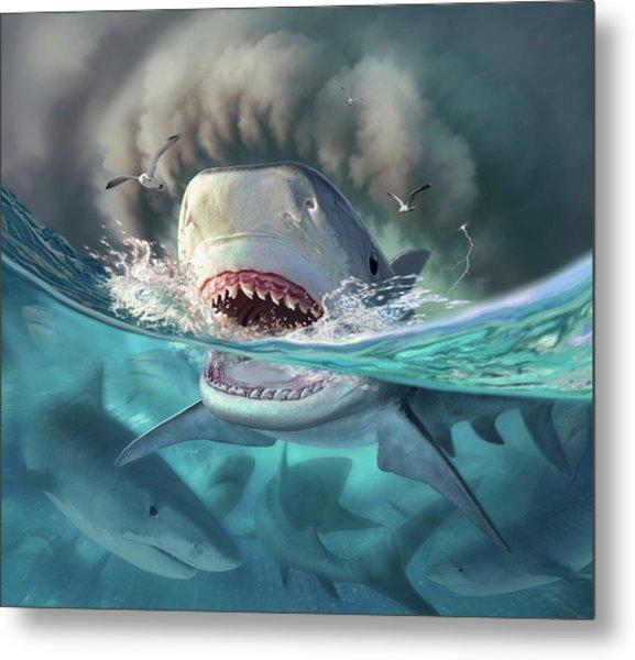 Tiger Sharks Metal Print