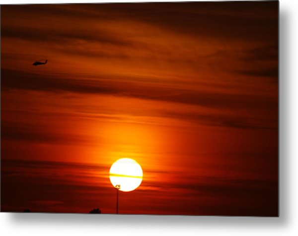 Tiger Sunset Metal Print by Don Prioleau