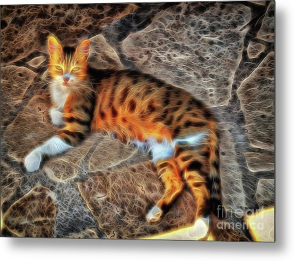 Metal Print featuring the photograph Tiger Tiger Burning Bright by Leigh Kemp
