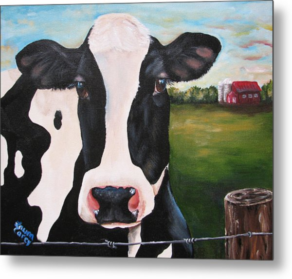 Till The Cows Come Home Metal Print by Laura Carey