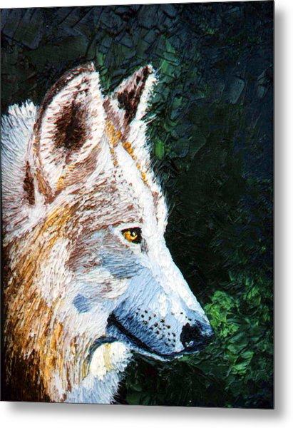 Timberwolf Metal Print by Stan Hamilton