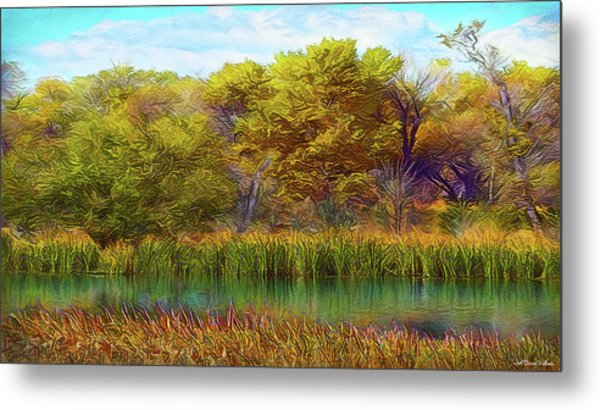 Timeless Pond Metal Print