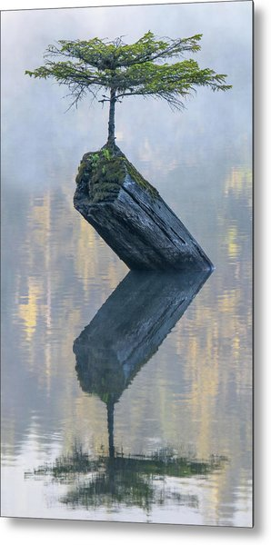 Timeless Tranquility Metal Print