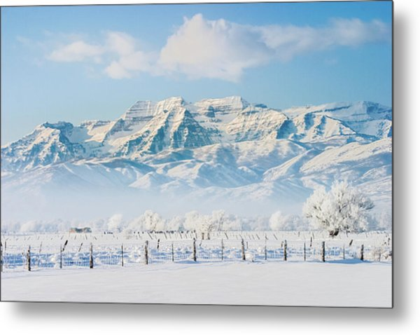 Timp In Winter Metal Print