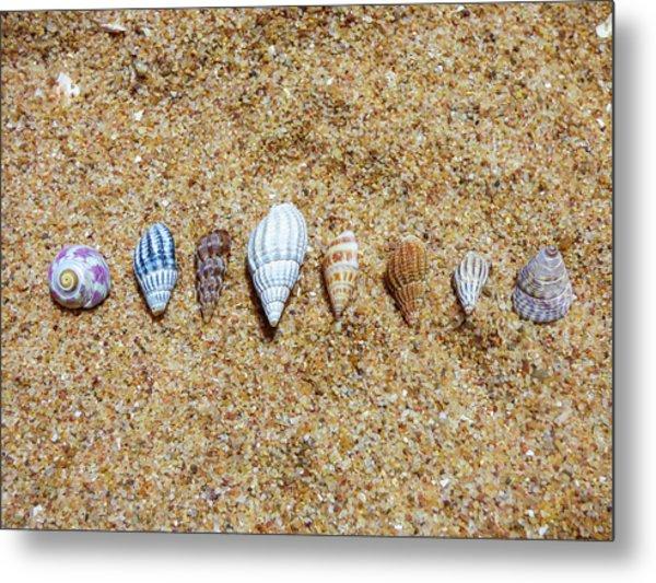 Tiny Seashells On The Sand Metal Print