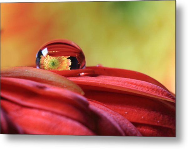 Tiny Water Drop Reflections Metal Print