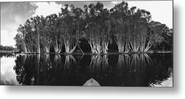 Tip Of The Kayak Metal Print by Tara Miller