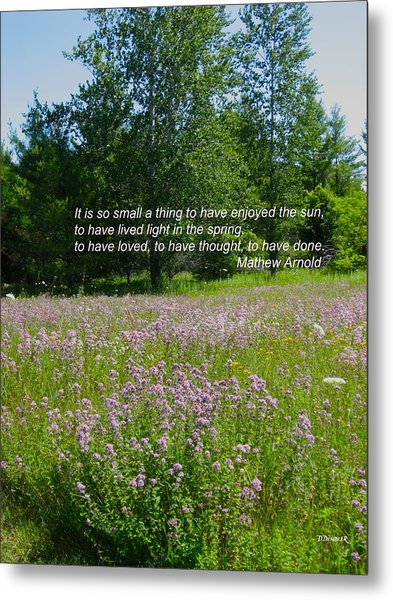 To Live Light In The Spring Metal Print