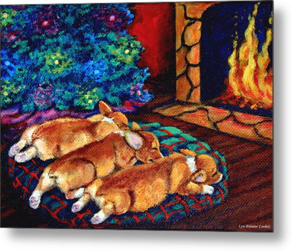 Toasty Toes Metal Print