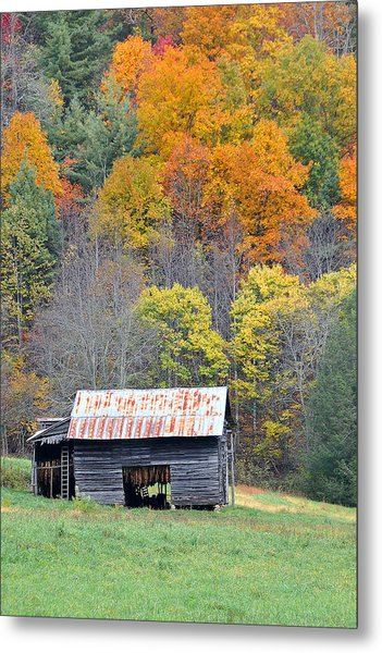 Tobacco Barn Metal Print by Alan Lenk