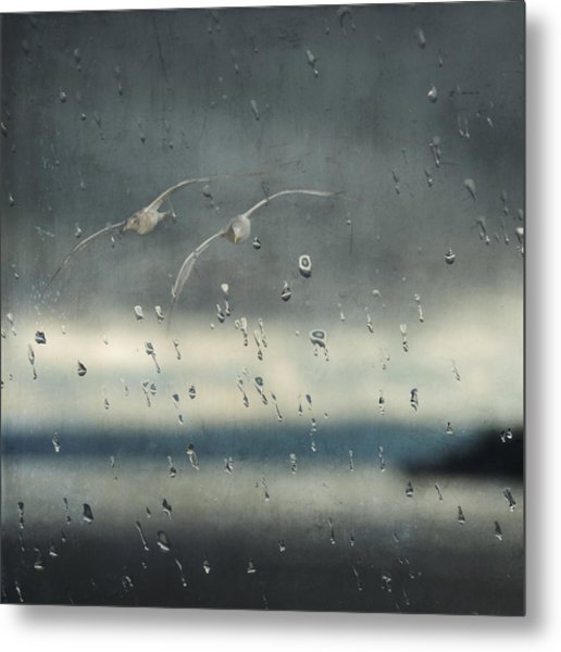 Metal Print featuring the photograph Together In The Rain by Sally Banfill
