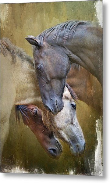 Togetherness Metal Print