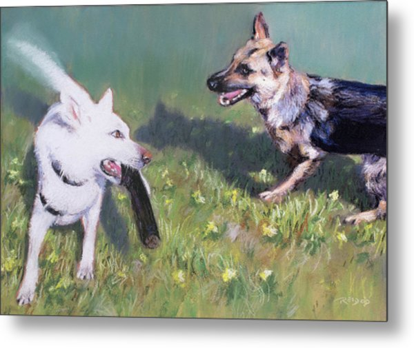 Togo And Friend Metal Print