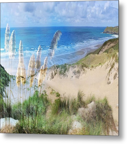 Toi Tois In Coastal  Sandhills Metal Print