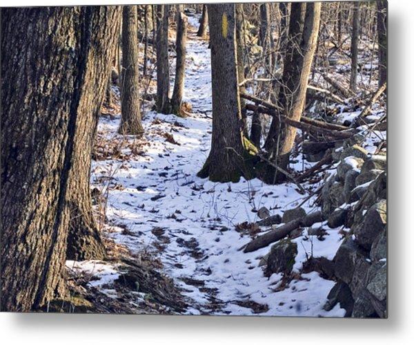 Tom Paul Trail Winter Metal Print
