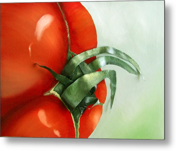 Tomato - Original Sold Metal Print by Cathy Savels