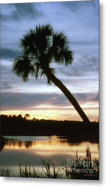 Tomoka River Sunset Metal Print