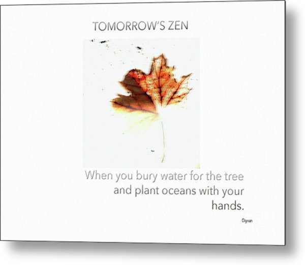 Tomorrow's Zen  Metal Print by Steven Digman