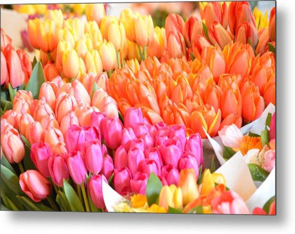Tons Of Tulips Metal Print
