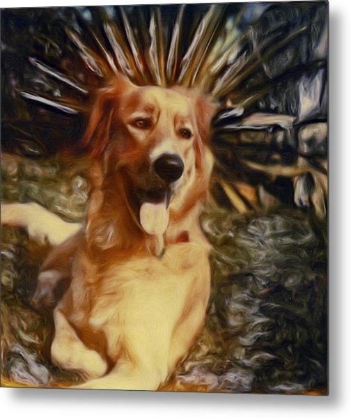 Top Dog Metal Print by Lou  Novick