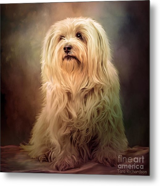 Top Dog Metal Print