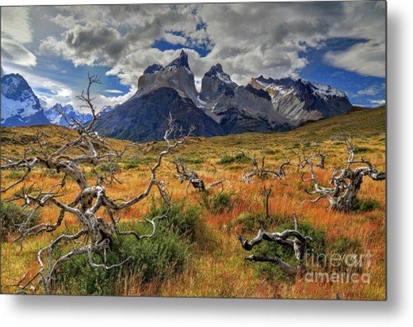 Torres Del Paine 18 Metal Print