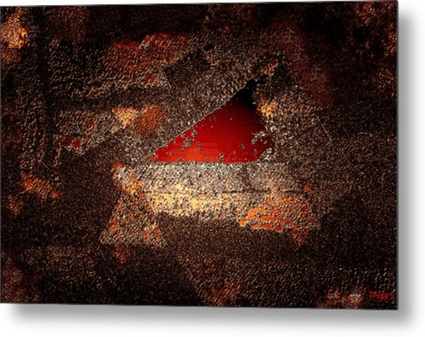 Touch Of Brown Metal Print