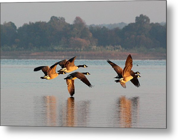 Touching Down At Sunrise Metal Print