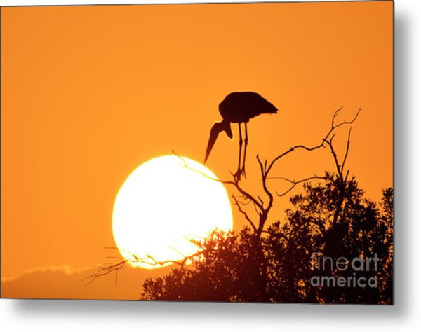 Touching The Sun Metal Print