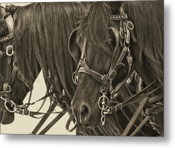 Tour Lexington Pair Metal Print by JAMART Photography