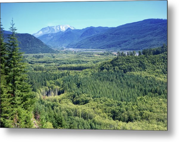 Toutle Valley, Wa Metal Print