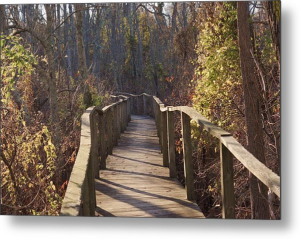 Trail Bridge Metal Print