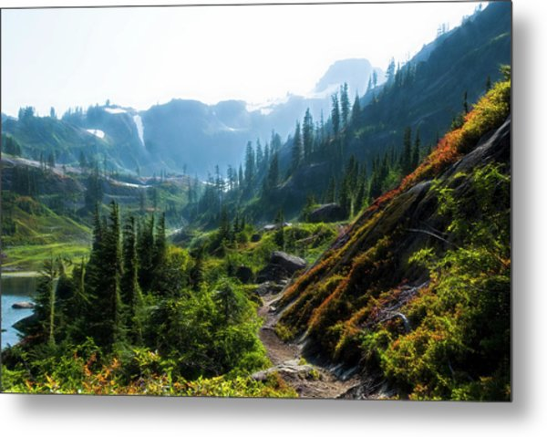 Trail In Mountains Metal Print