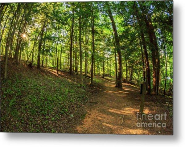 Trail To John Oliver Cabin Metal Print