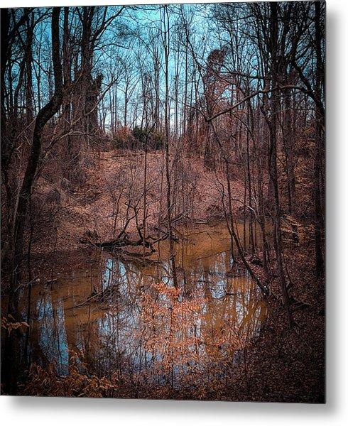Trailing Creek Metal Print