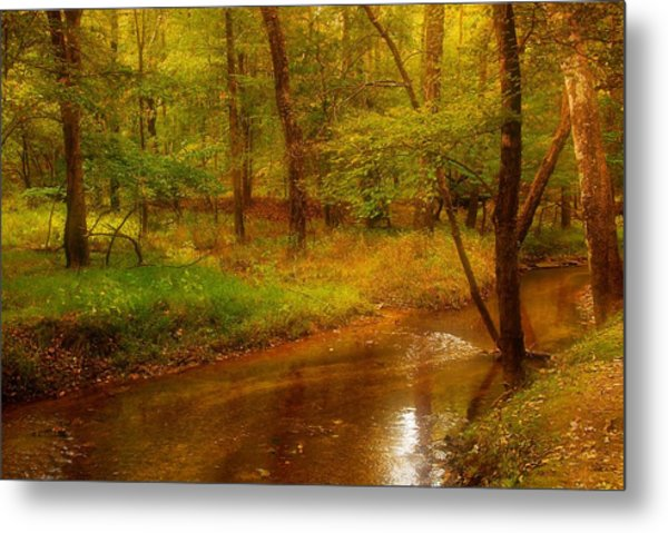 Tranquility Stream - Allaire State Park Metal Print by Angie Tirado