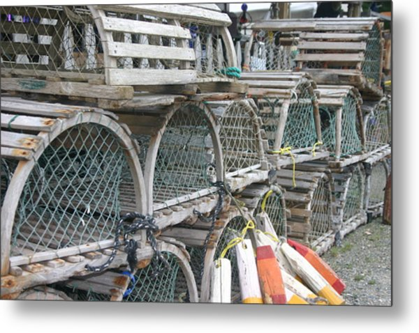 Traps Metal Print by Dennis Curry