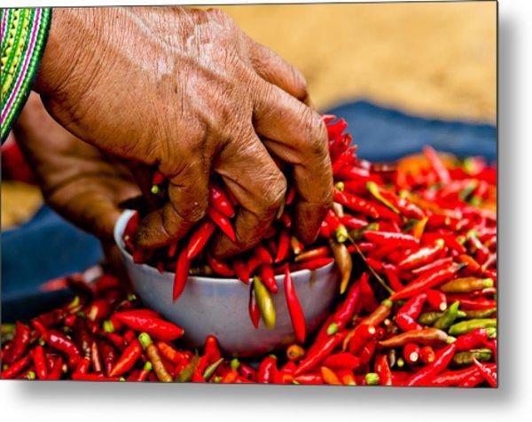 Woman Holding Red Chillies, Can Cau Market, Sapa,vietnam Metal Print