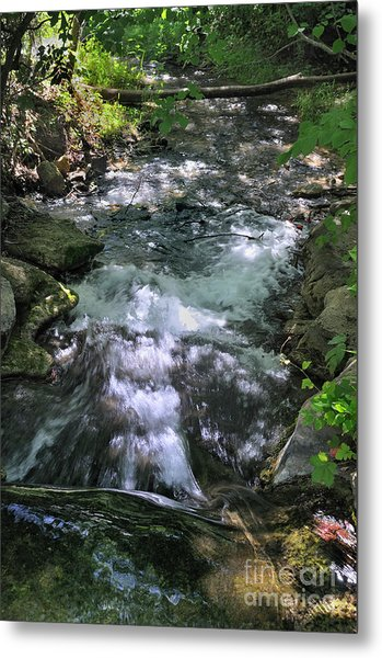 Travertine Creek Metal Print by Ron Cline