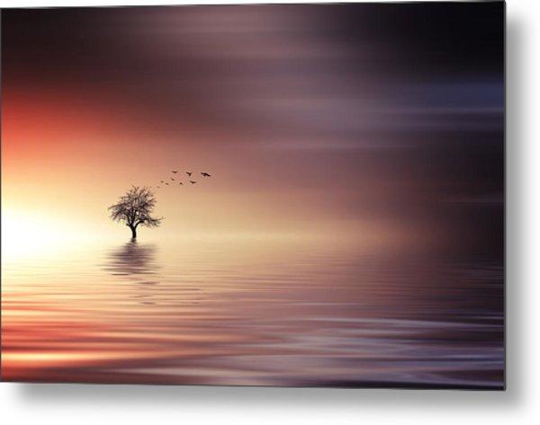 Tree And Birds On Lake Sunset Metal Print