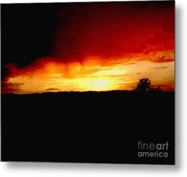 Tree At Sunset Metal Print by Merton Allen