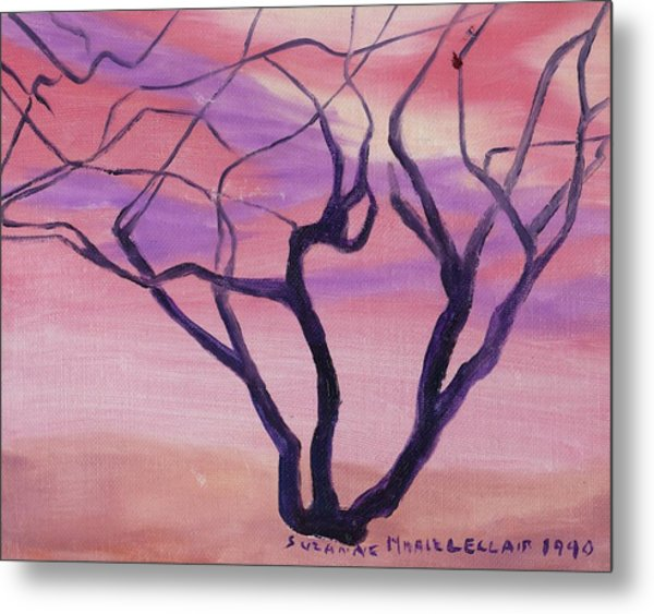 Tree At Sunset Metal Print by Suzanne  Marie Leclair