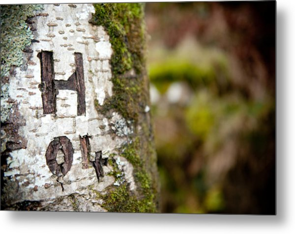 Tree Bark Graffiti - H 04 Metal Print