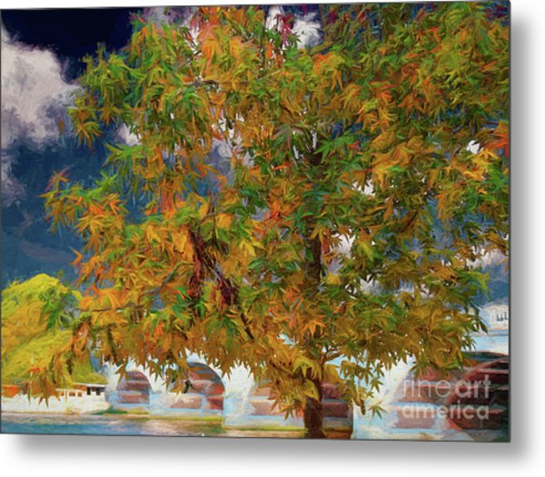 Tree By The Bridge Metal Print